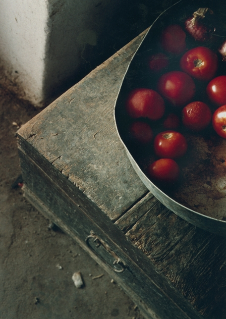 Dimitri's Farm/tomatoes, 1998-2015, archival digital print, 13.5 x 9.75""