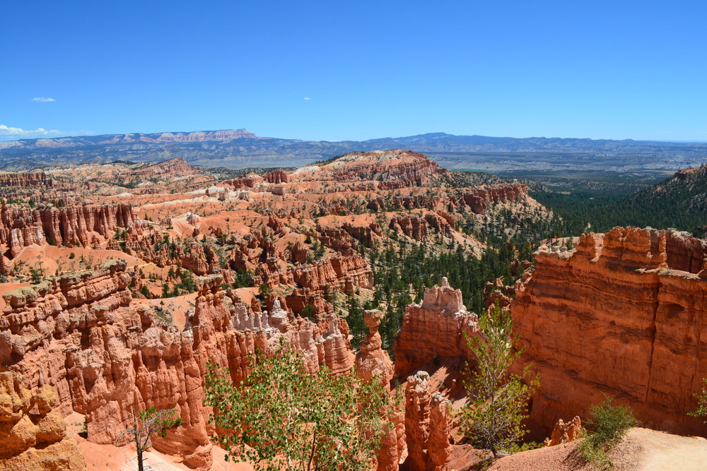 Bryce Canyon (UT)