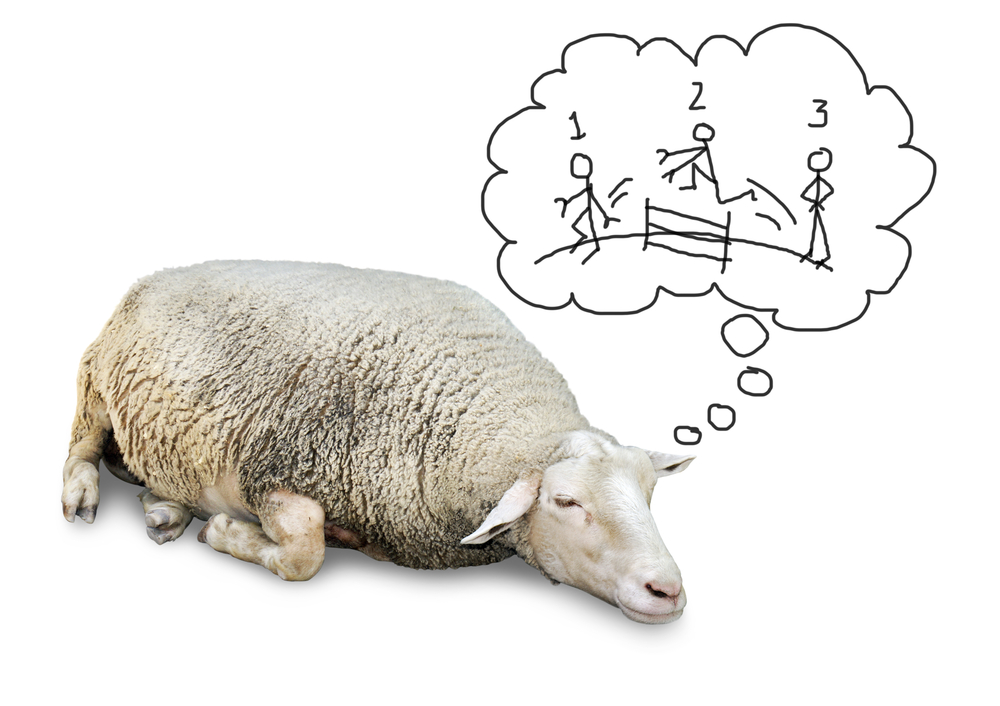 Sleep counting sheep shutterstock_110338271.jpg