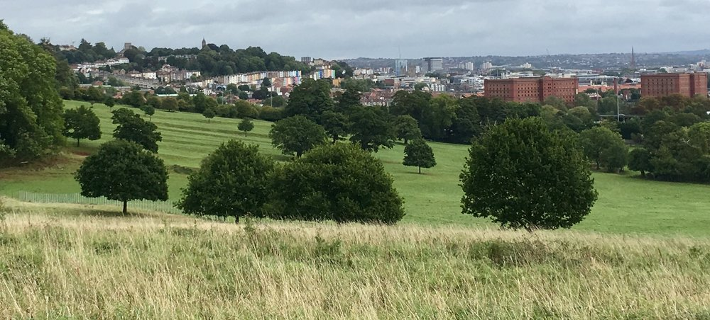 Ashton Court Estate offers a great view of Bristol's skyline