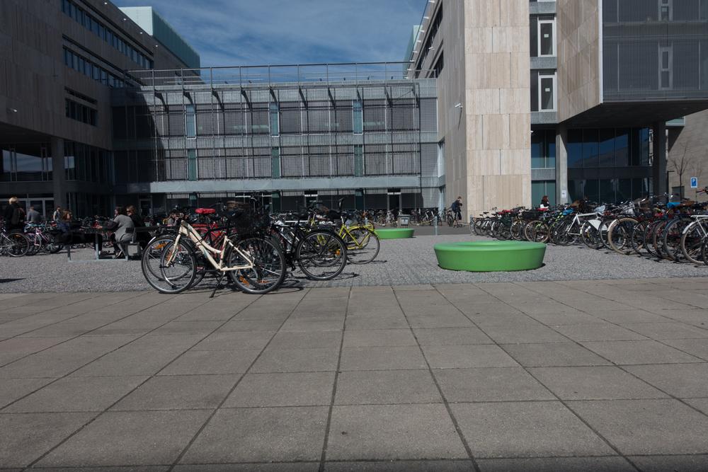 Copenhagen Residency-131.jpg