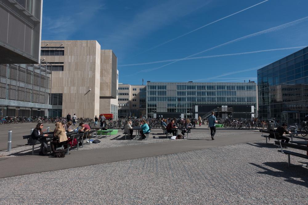 Copenhagen Residency-127.jpg