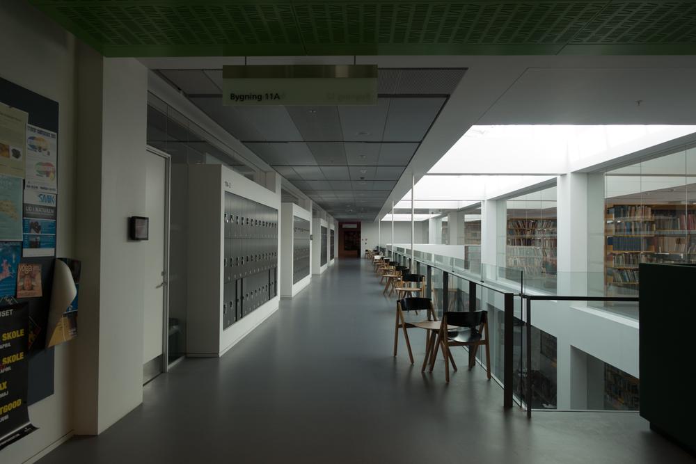 Copenhagen Residency-119.jpg