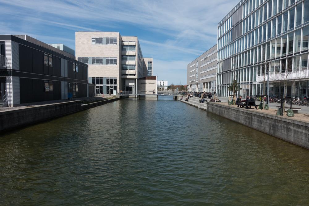 Copenhagen Residency-135.jpg
