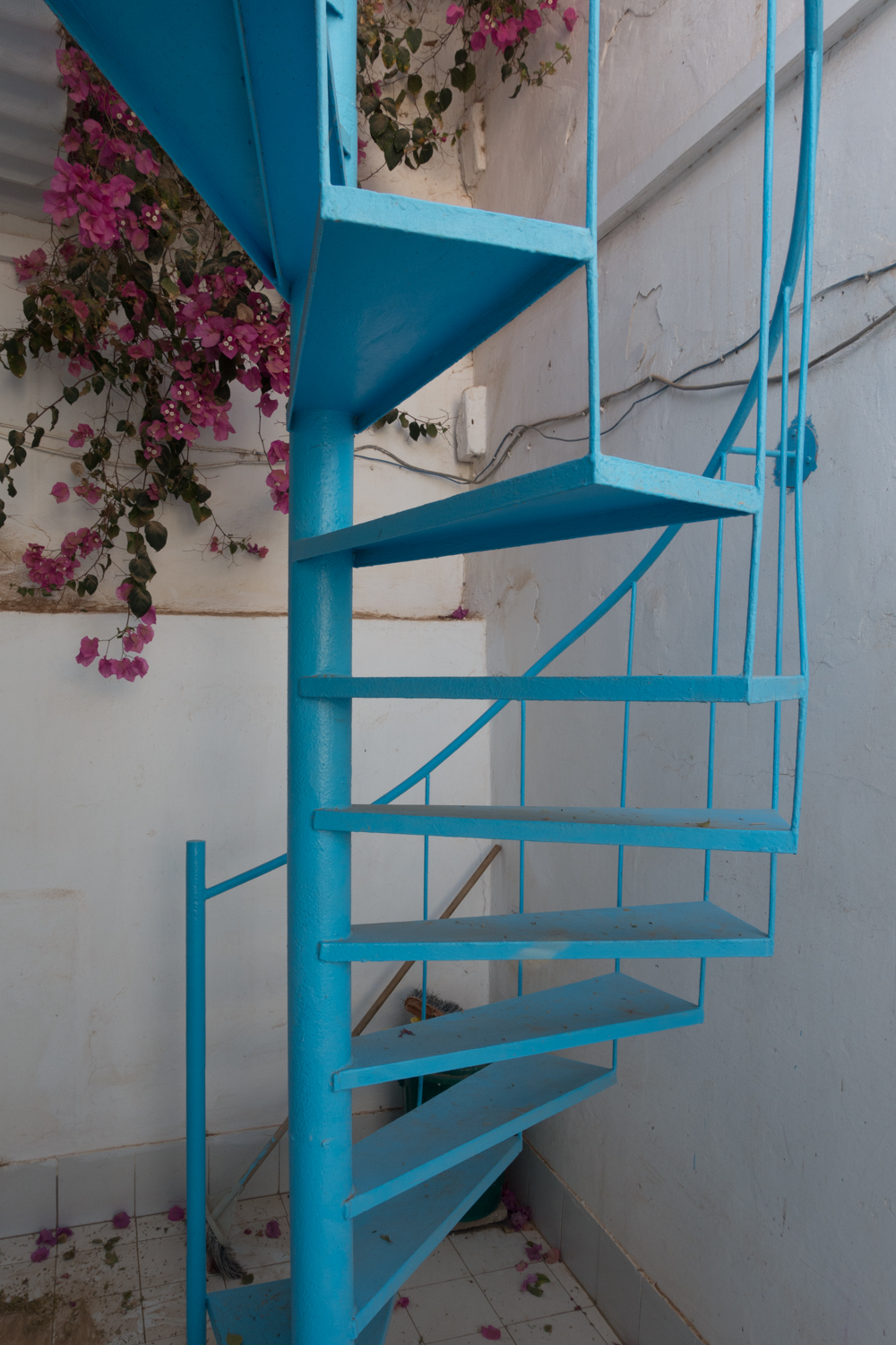 Stairs going up to the terrace (and the beautifulBougainvillea peaking from above)