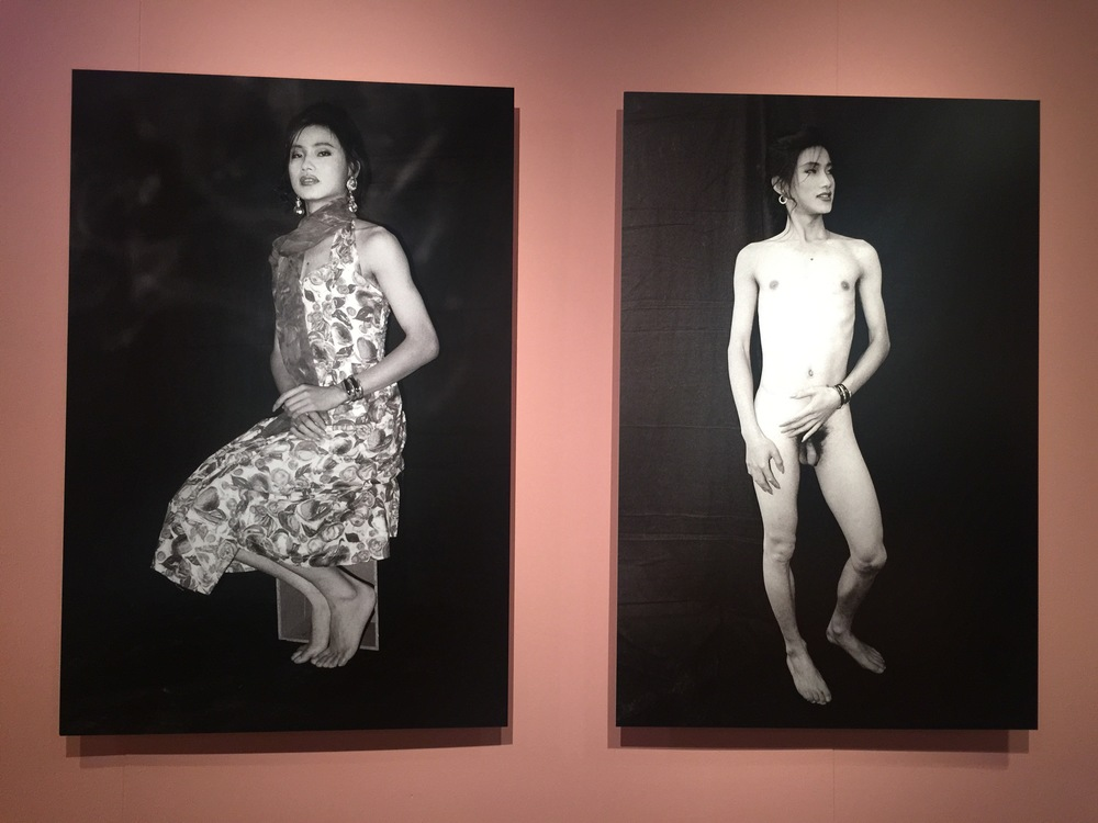 Fen Ma Liuming Series No. 1 (1993)
