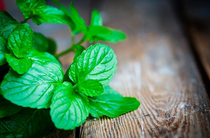 Botanicals — Linda Hall Spa Consultant