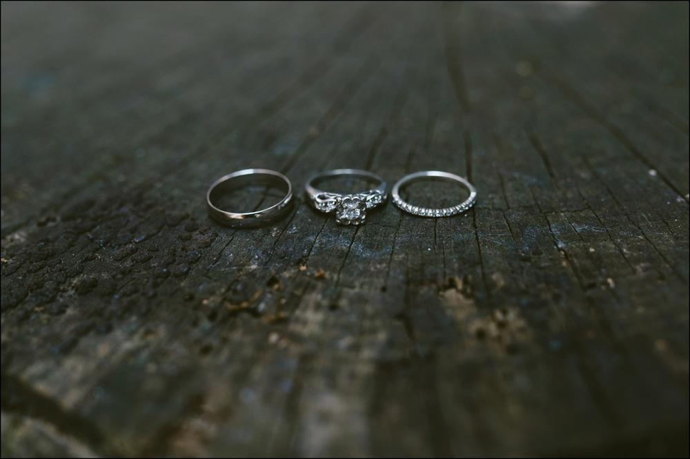 Fayetteville-Arkansas-Mount-Sequoyah-Summer-Wedding_0199.jpg