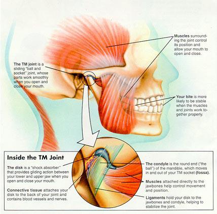Tmj Jaw Pain Dysfunction The Cobham Clinic Health Beauty