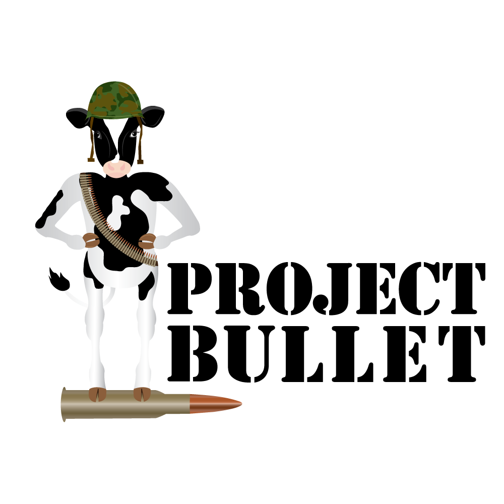 projectbullet.png
