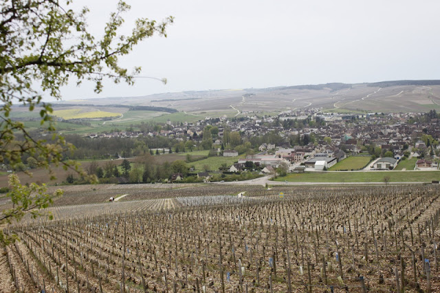 Chablis, as seen from the Grand Cru vineyards