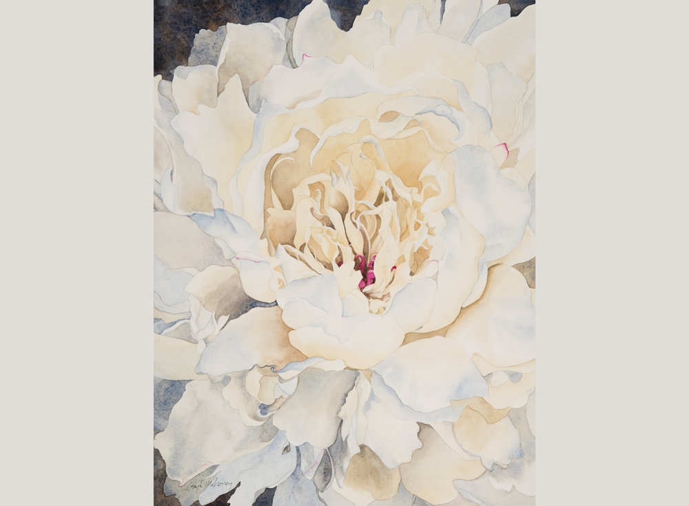 Peonies in Cream