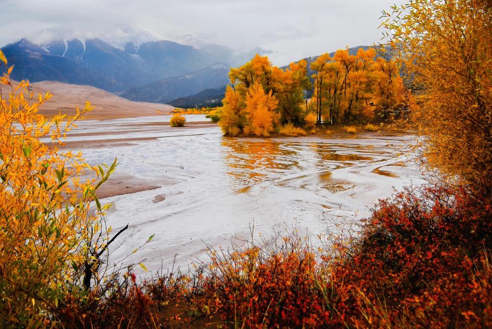 Fall Colors Along Medano Creek - NPS Photo