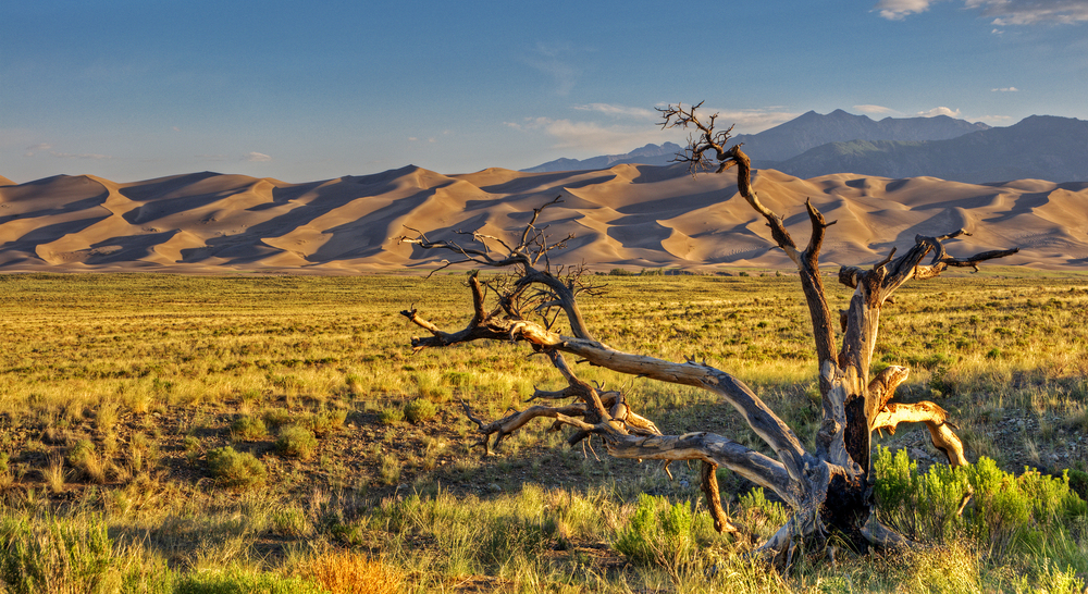 Sunrise At Great Sand Dunes National Park & Preserve