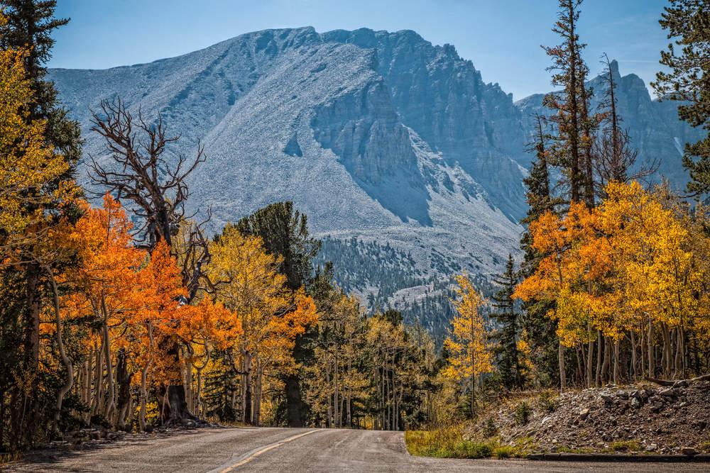 Wheeler Peak Scenic Drive –(PHOTO:Arlene Treiber Waller/SHUTTERSTOCK)