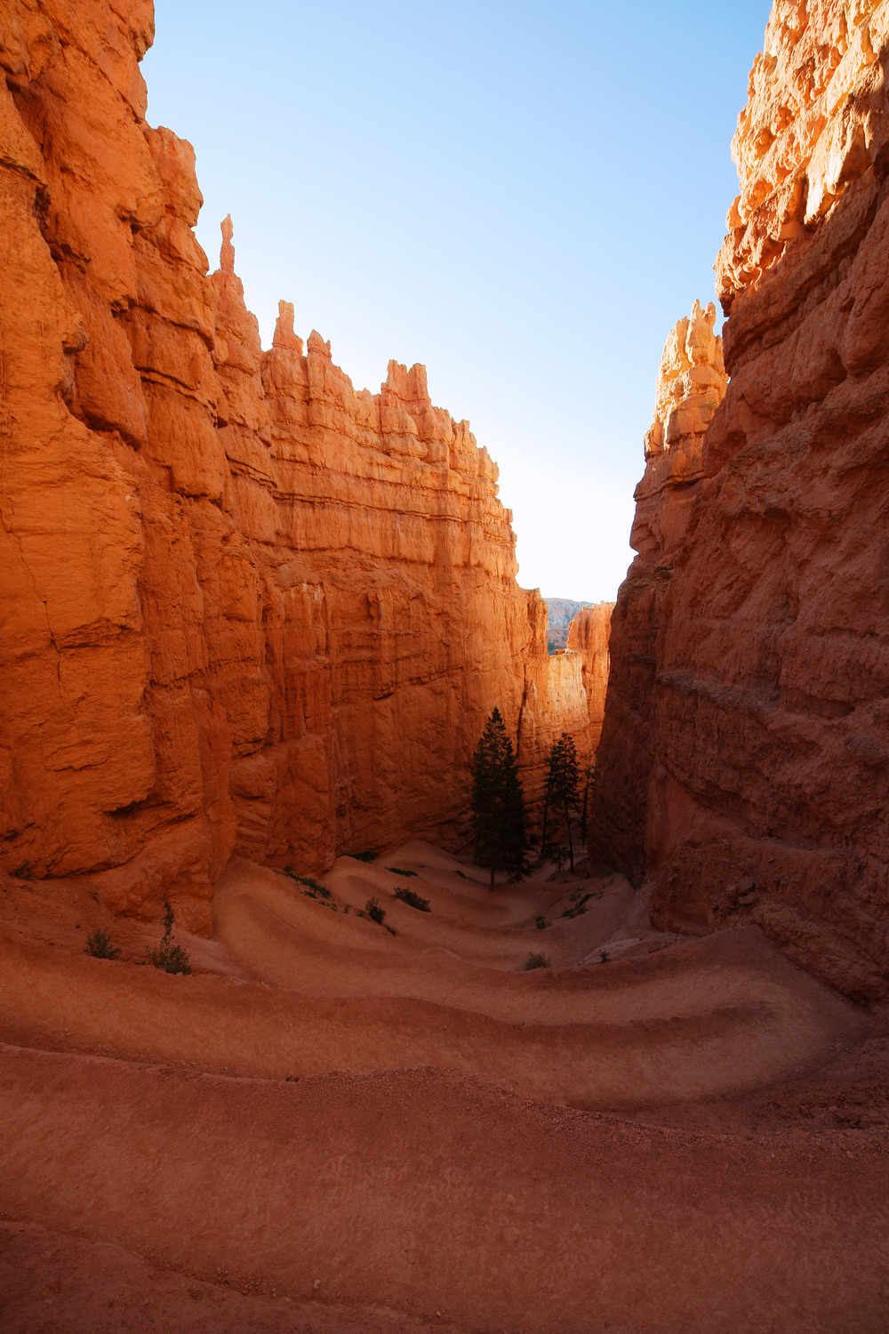 navajo loop TRAIL –  (PHOTO: MARCO TOMASINI/SHUTTERSTOCK)