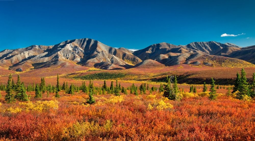 (An extremely rare clear Autumn day in Denali National Park - Photo by eyeCatchLight Photography/SHUTTERSTOCK)