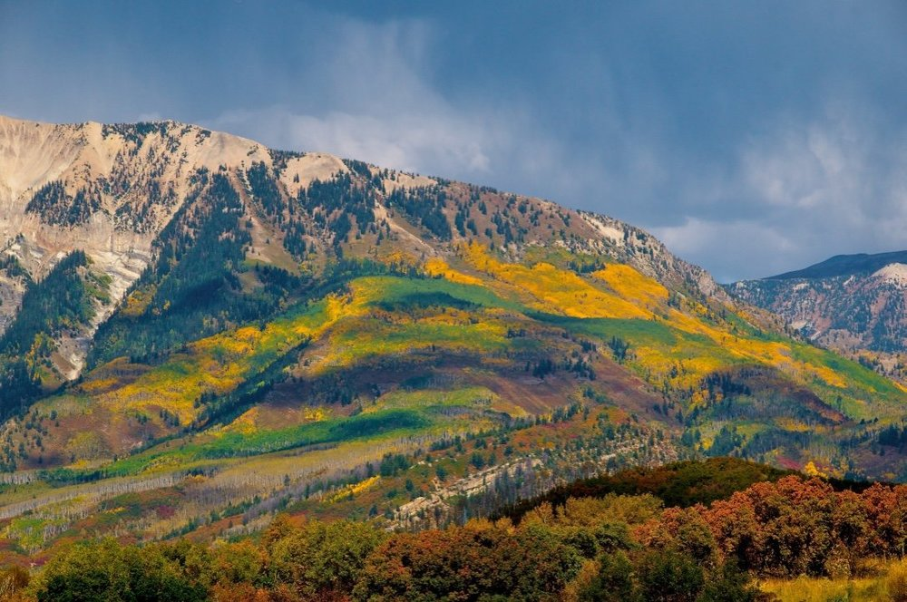 (Eye catching colors dot the mountain side in Rocky Mountain National Park - Photo by  JTang /SHUTTERSTOCK)
