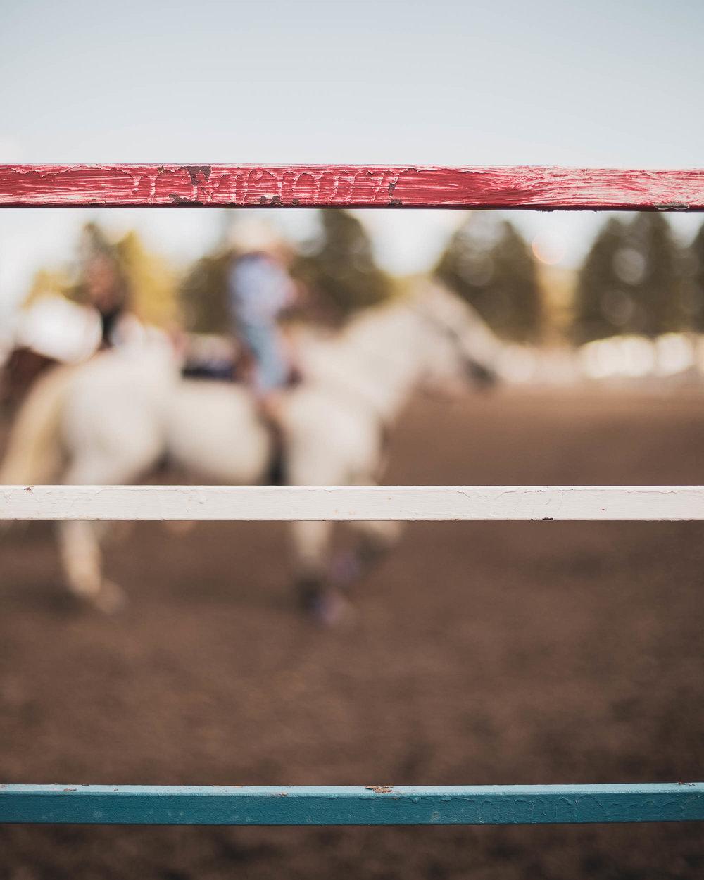 rodeo_portfolio_preview-4.jpg
