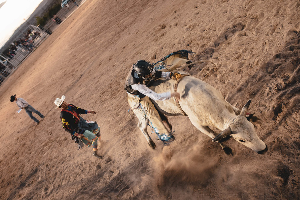 rodeo_portfolio_preview-3.jpg
