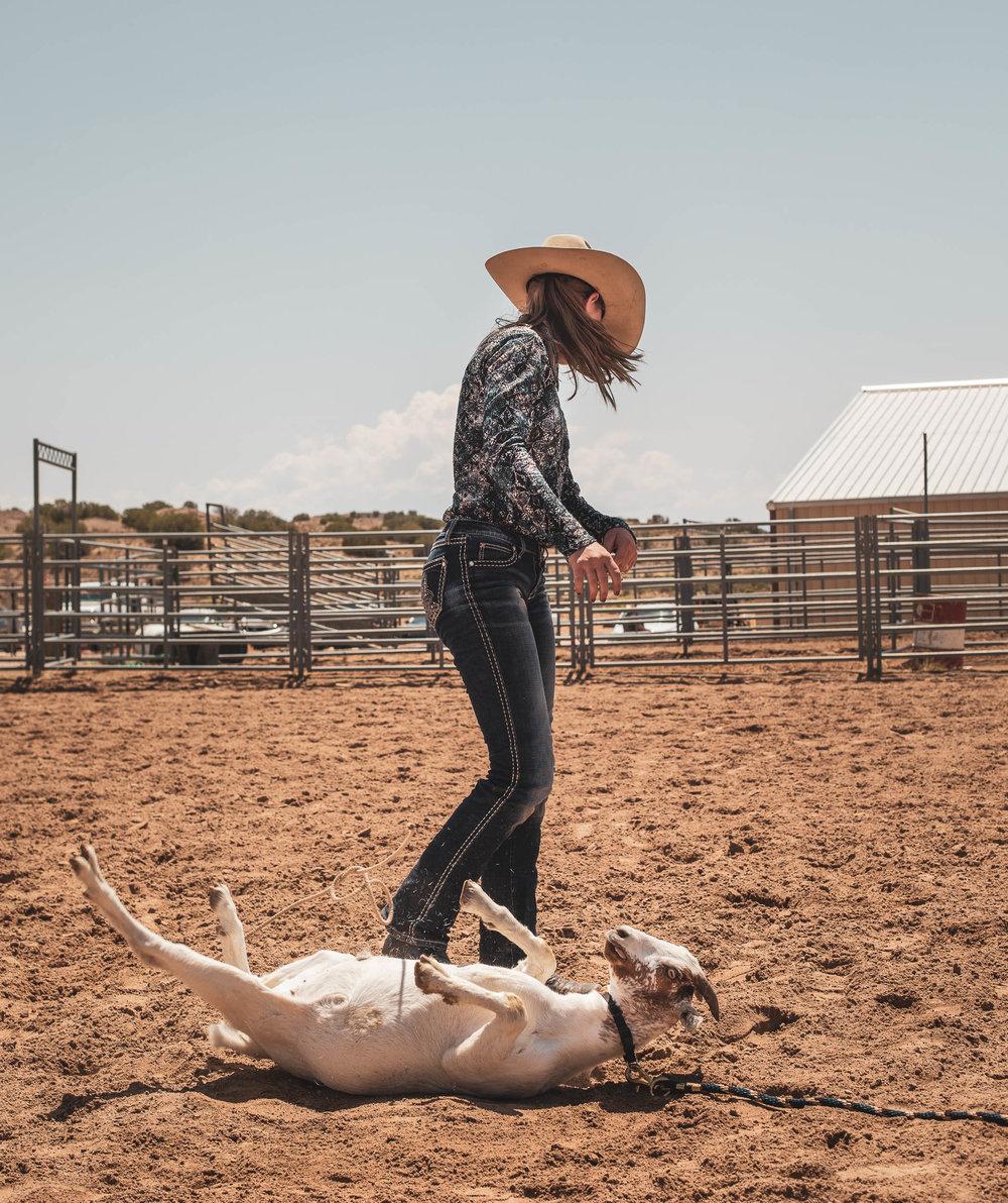 rodeo_portfolio_preview-11.jpg