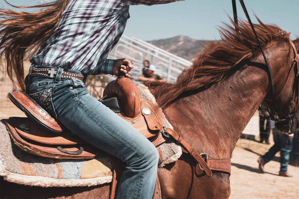 rodeo_portfolio_preview-17.jpg