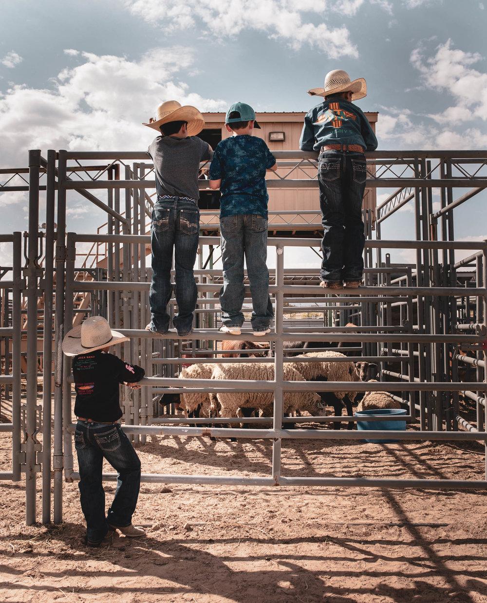 rodeo_portfolio_preview-18.jpg
