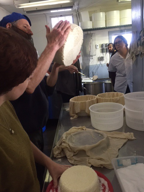 Westminster Artisan Cheesemaking