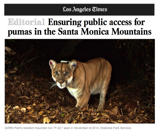 "LA Times endorses CLAW's wildlife corridor initiative. ""Angelenos are lucky to live in an urban environment that still has some wildlife and wild spaces left. Let's keep it that way."""