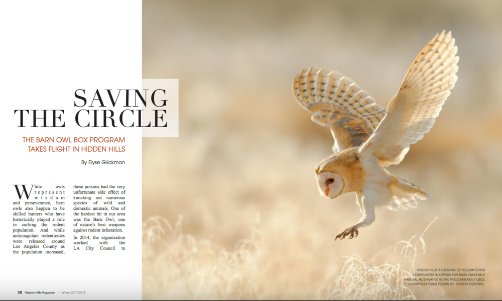 Hidden Hills Magazine profiles CLAW's Barn Owl Nesting Box Program.