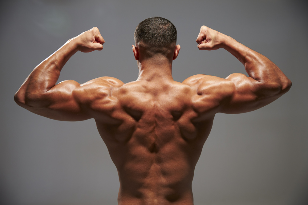 Ripped Monday : Back and Tricep Killer Routine With A Side ...