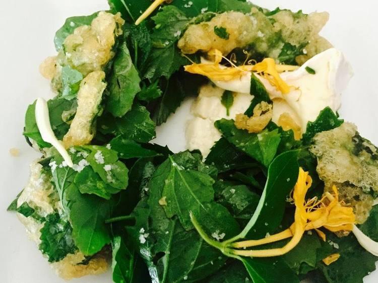 delicious salad healthy.jpg