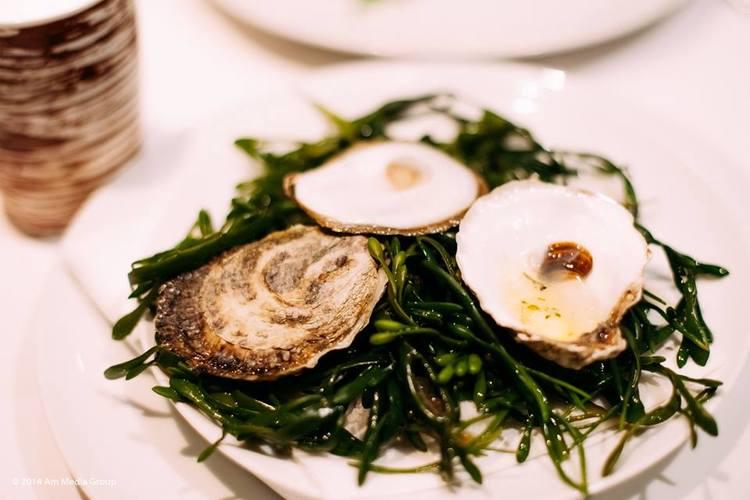 fresh oysters almanac nyc.jpg