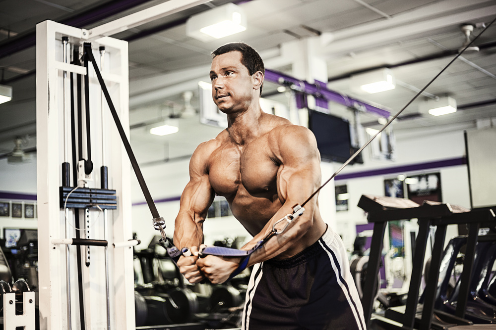 Man Working Out with Fit Pro Active Trainers In NY