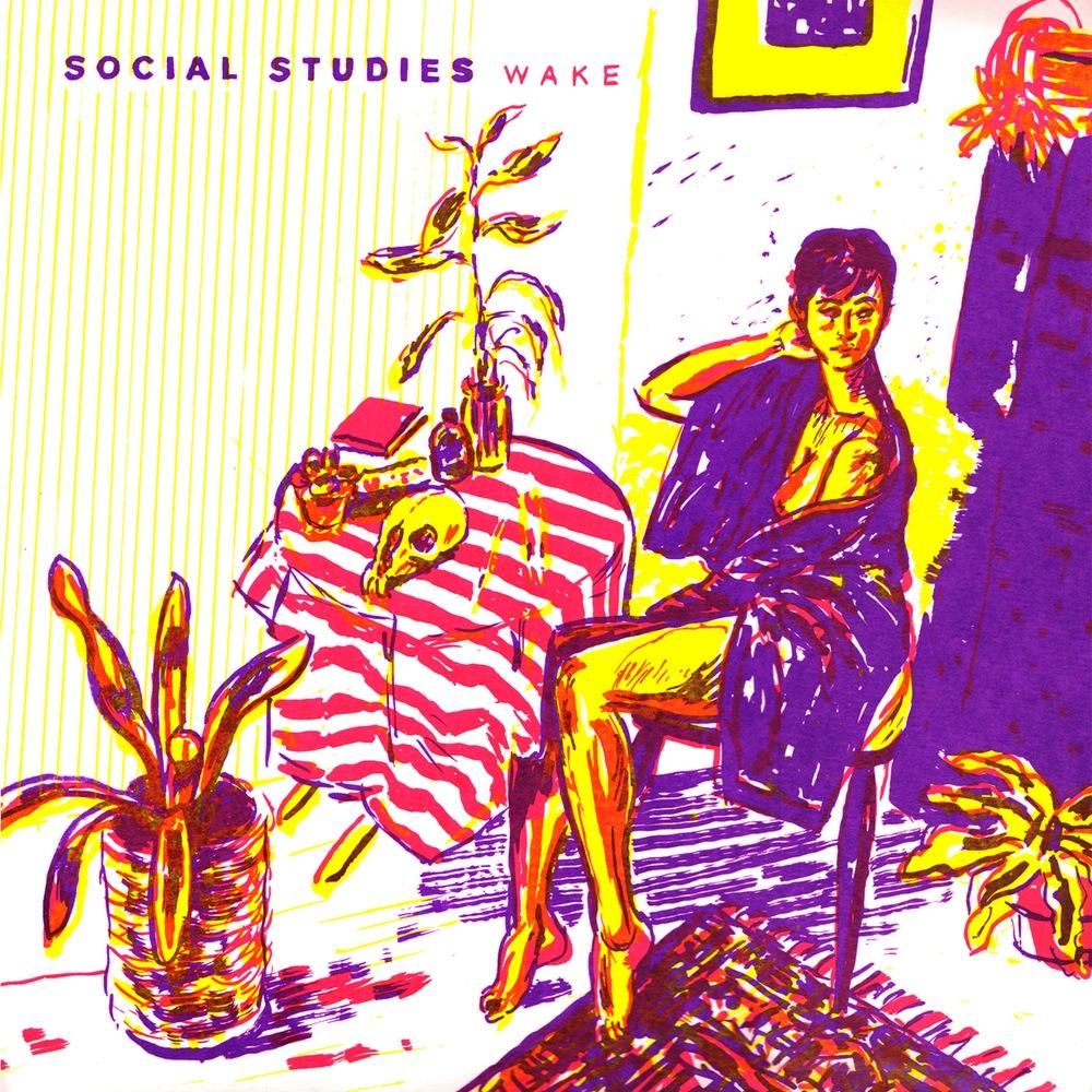 Social Studies, Wake, 2015