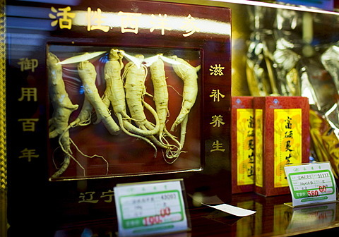 Ginseng roots sold in a traditional Chinese medicine shop in Wangfujing Street, Beijing, China. Source: www.robertharding.com