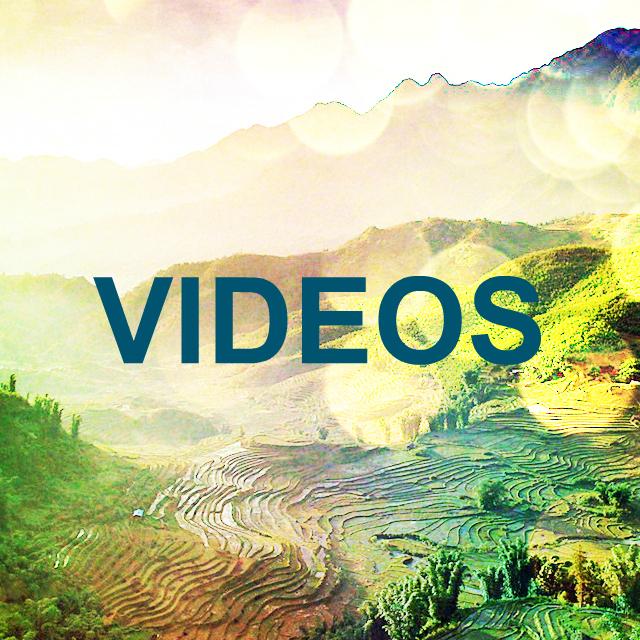 P4V_Videos.jpg