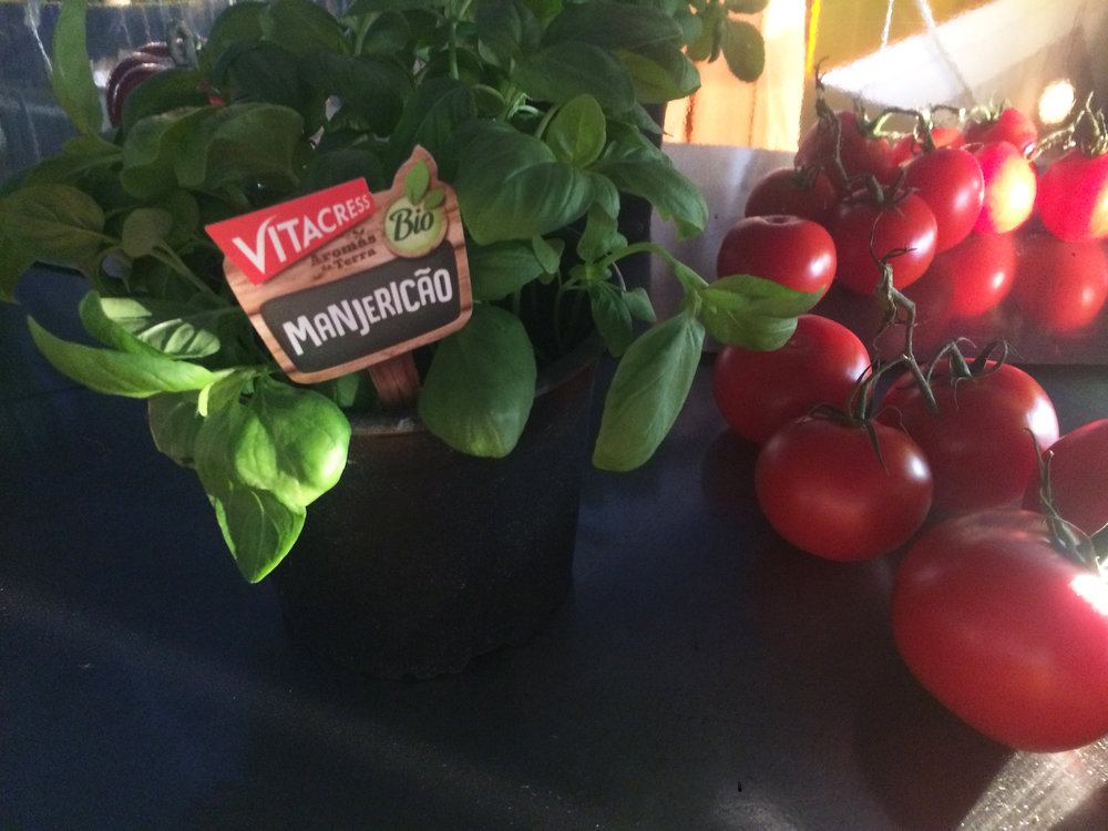 Tomates VITACRESS