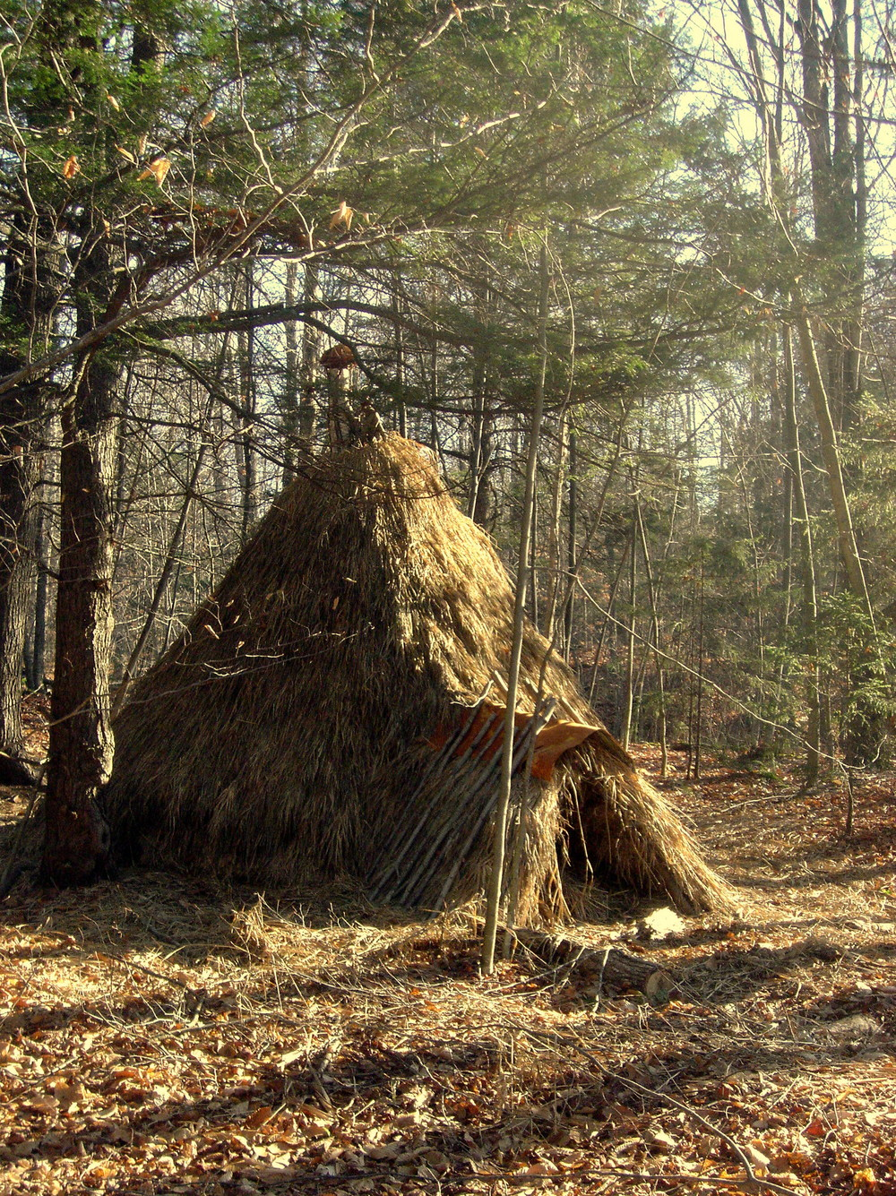 conical grass thatched lodge.JPG