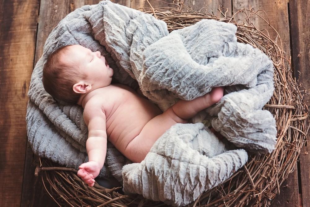 Baby Bowens 4.jpg