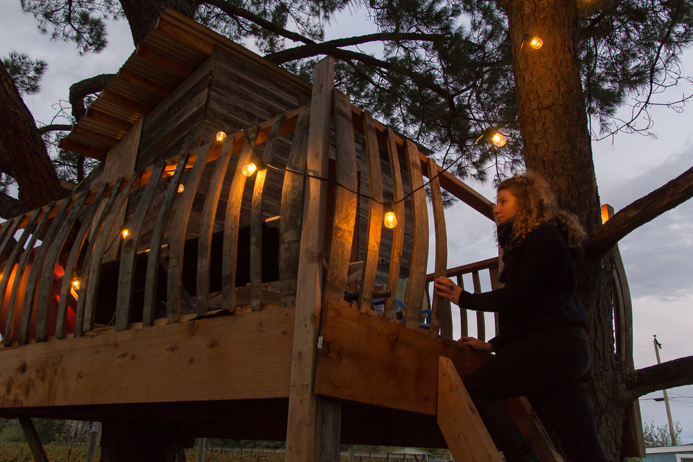treehouse_night_2.jpg