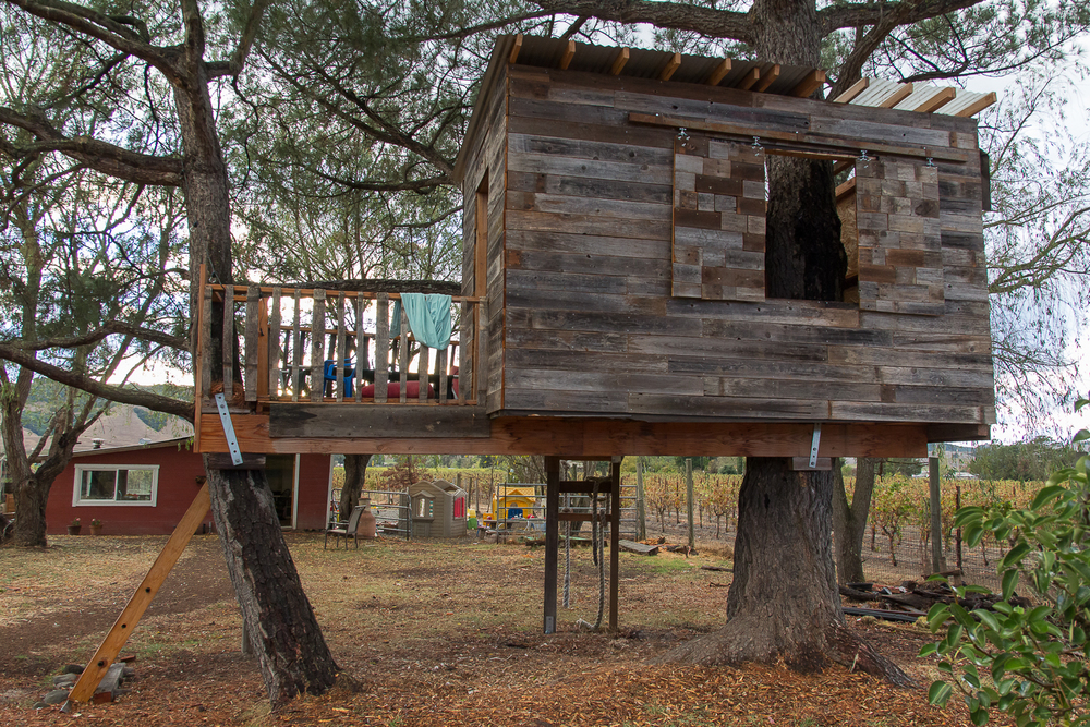 treehouse_2.jpg