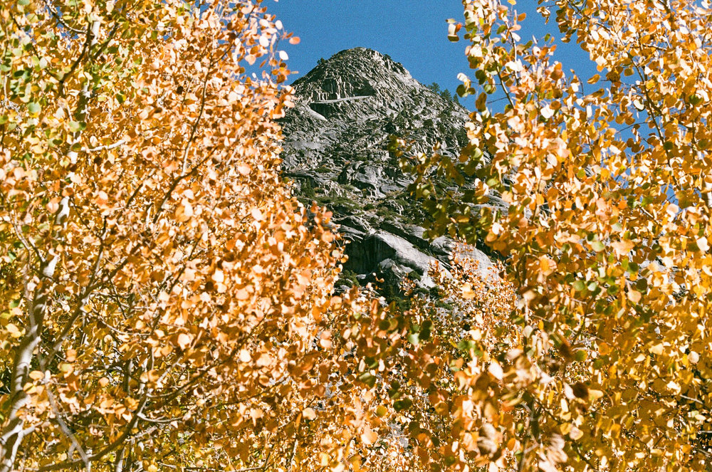 dome with aspen-07.JPG
