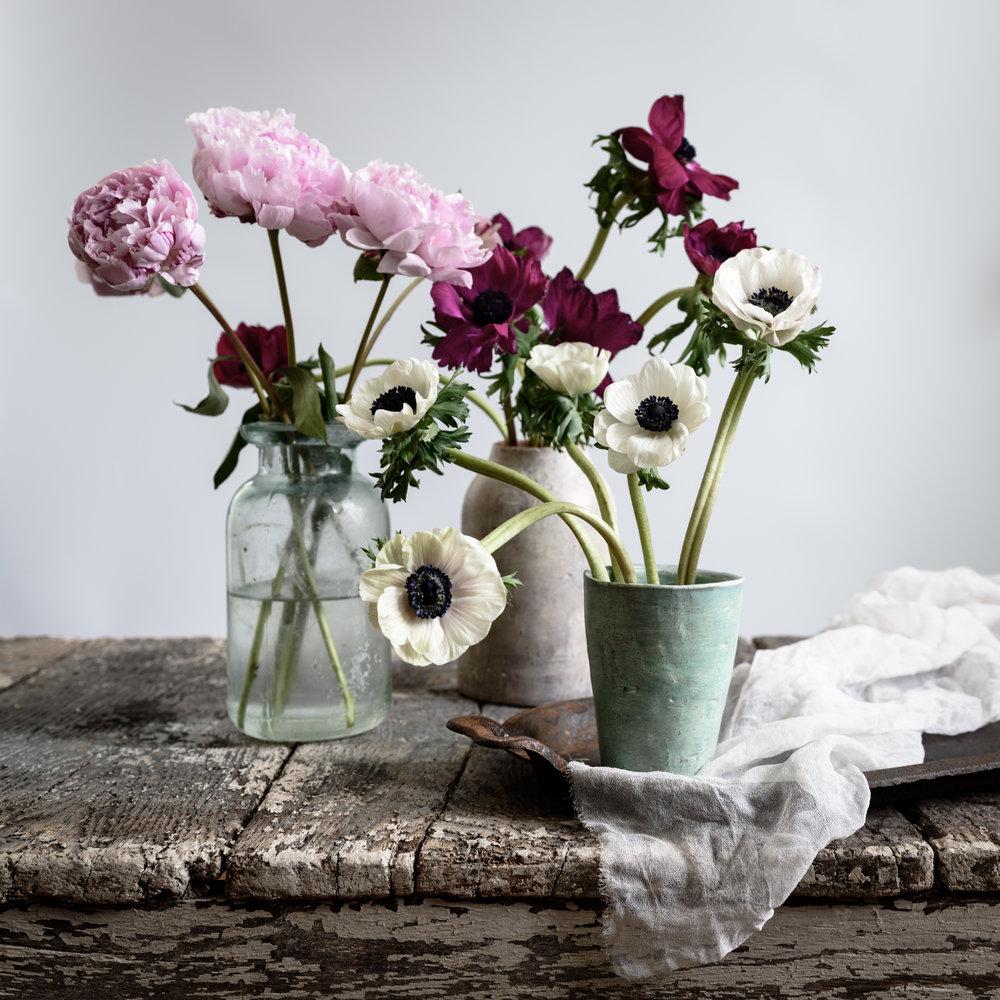 flowers (1 of 1)-6.jpg
