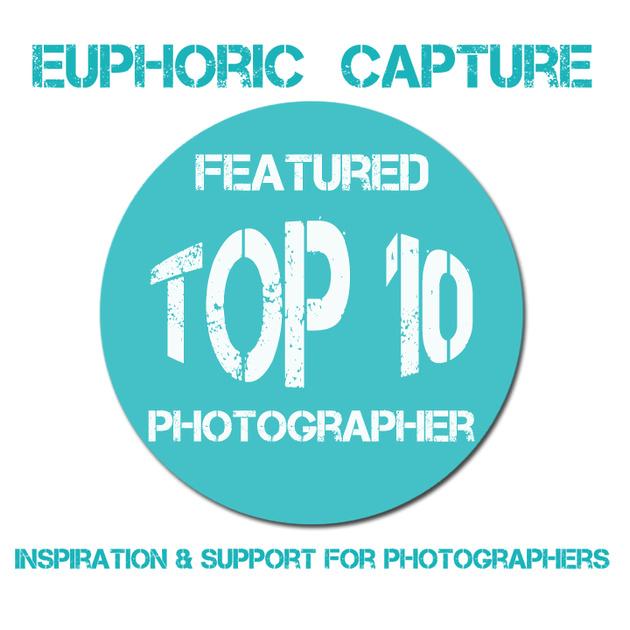 euphoric capture.jpg
