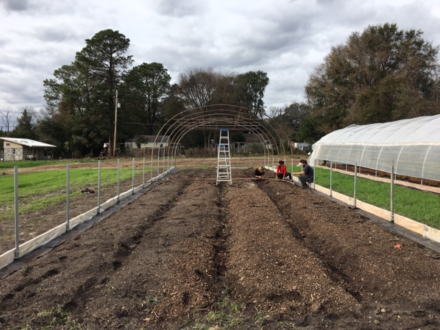 New high tunnel construction to help us grow over the winter