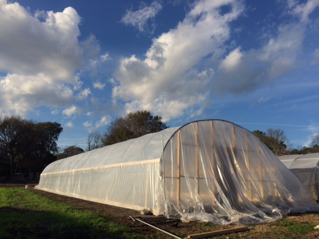 The High Tunnel allows us to over-winter and start summer crops, like tomatoes, earlier in the season.