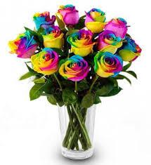 rainbow roses.jpeg