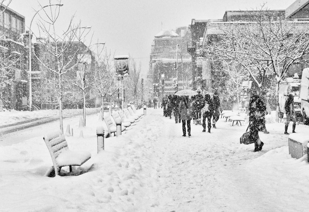 WinterInMontreal.jpg
