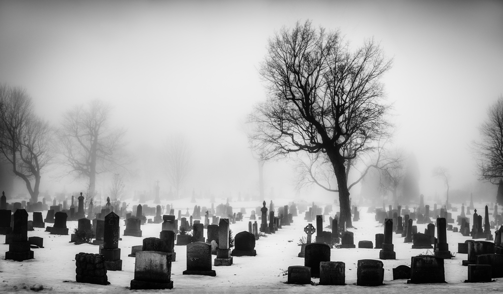 CemeteryFog_Pano.jpg